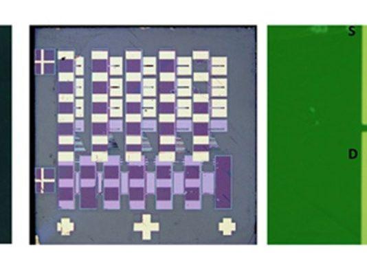 MEMS sensor chip