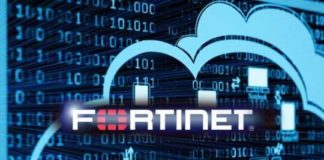 Fortinet SD-WAN ASIC