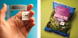 Active Smart and Intelligent Packaging