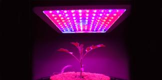 LPR Horticulture Applications