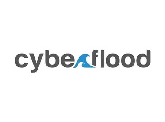 Sprint cyberflood