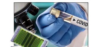 Exxelia Ohmcraft Custom Resistors