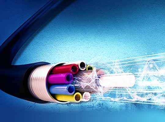 Backbone of the Network