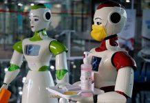 Robotic Startups in India