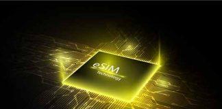 Cellular IoT eSIM Adoption